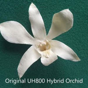 UH800